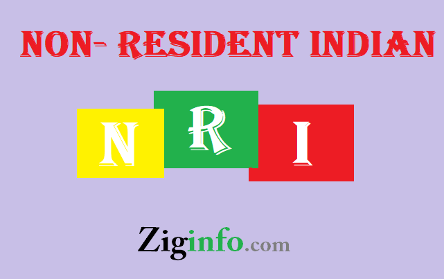 NRI meaning in Hindi